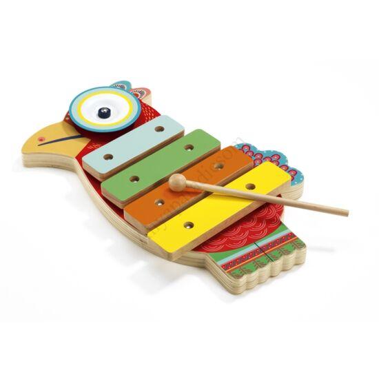 Djeco papagáj cintányér és xilofon