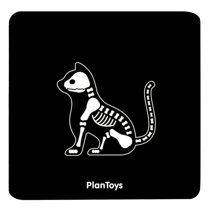 plantoys allatorvosi szett